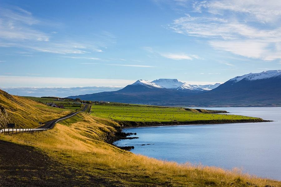 https://www.ipomehotels.com/wp-content/uploads/2020/03/Islanda-by-Photo-by-Josh-Reid-on-Unsplash.jpg