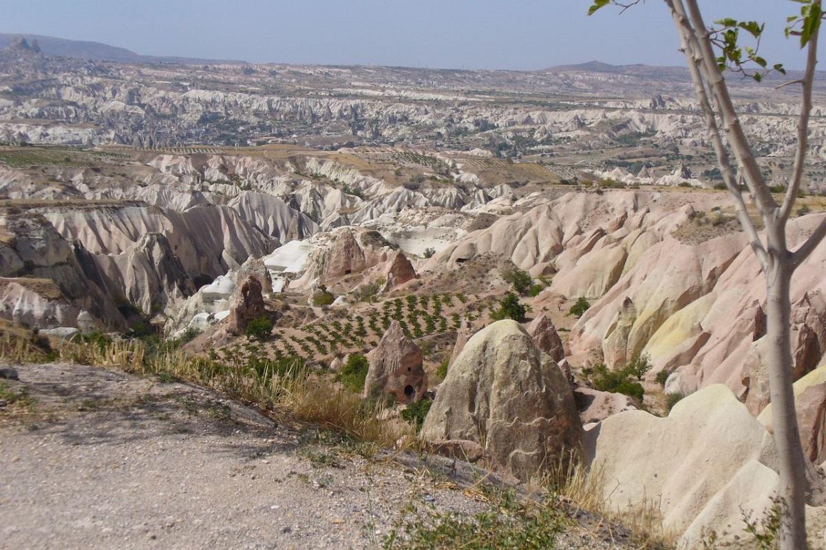 I vitigni della Cappadocia